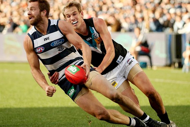 Cats Star Joins Hawks